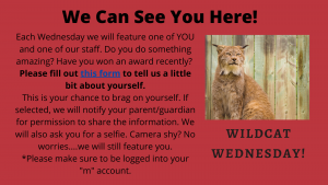 Wildcat Wednesday Survey